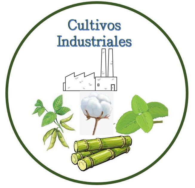 Cultivos.jpg
