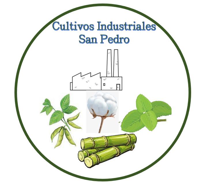Logo%20SP.png